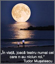 Luna Nouă în zodia Pești și Eclipsa inelară de Soare   Mesaje zodiacale (26 februarie 2017)