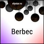 ZODIACUL VISELOR – BERBEC