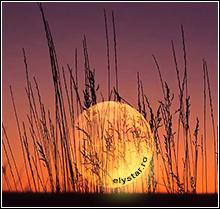 Luna Plină în semnul Vărsător și Eclipsa parțială de Lună din 7 august 2017  Mesajul transmis de acest eveniment pentru fiecare semn zodiacal