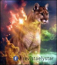 Luna Nouă în zodia Săgetător din 18 decembrie 2017  Mesajul transmis de acest eveniment pentru fiecare semn zodiacal