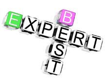 Topul experţilor sau corpul experţilor