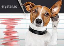 Prevestitorii biologici ai cutremurelor