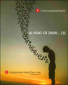 AI VISAT CĂ ZBORI… (3)