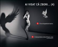 AI VISAT CĂ ZBORI… (4)